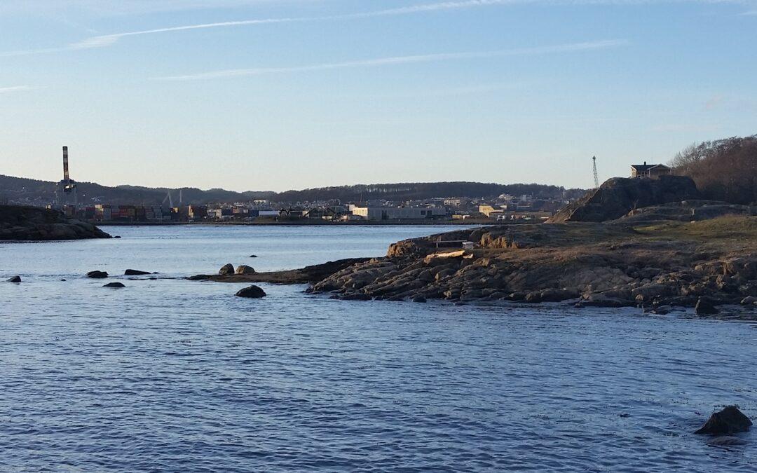 Kjenning med med fisk på årets første tur!